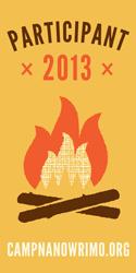 2013-Participant-Campfire-Vertical-Banner