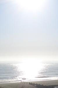 Early sun Winterton